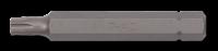 10mm TX Biteinsatz, 75mm, T30