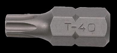 10mm TX Biteinsatz, 30mm, T25