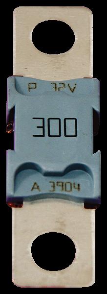 Interne Sicherung 300A, um die Batterie zu schützen 700 - 10